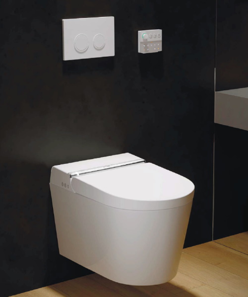 A NEW TOILET IS BORN: HYGEA Electronic toilet seat and bowl bright white with remote control, IW-H20LBW